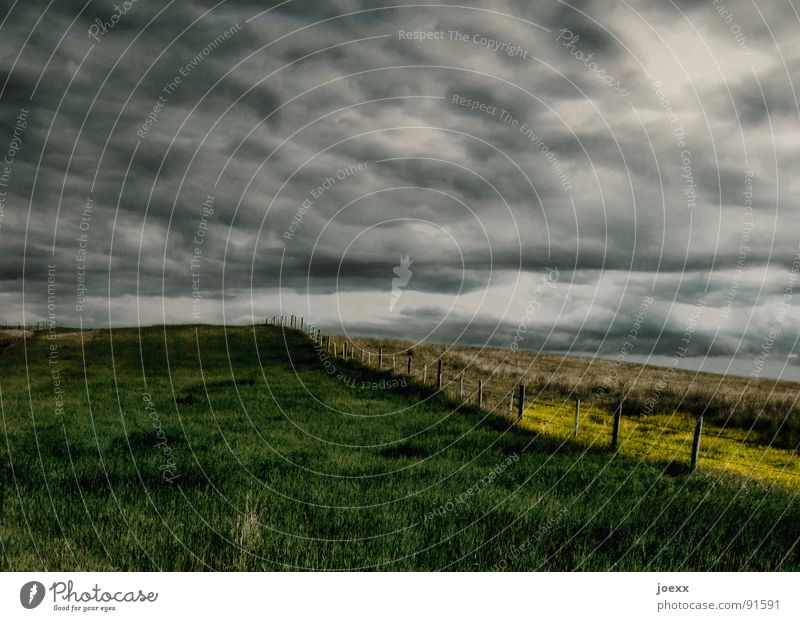 abyss Remote Field Fear Threat Clouds Dark Loneliness Yellow Storm clouds Grass Gray Green Horizon Agriculture Mood lighting Bad weather Moody Profound