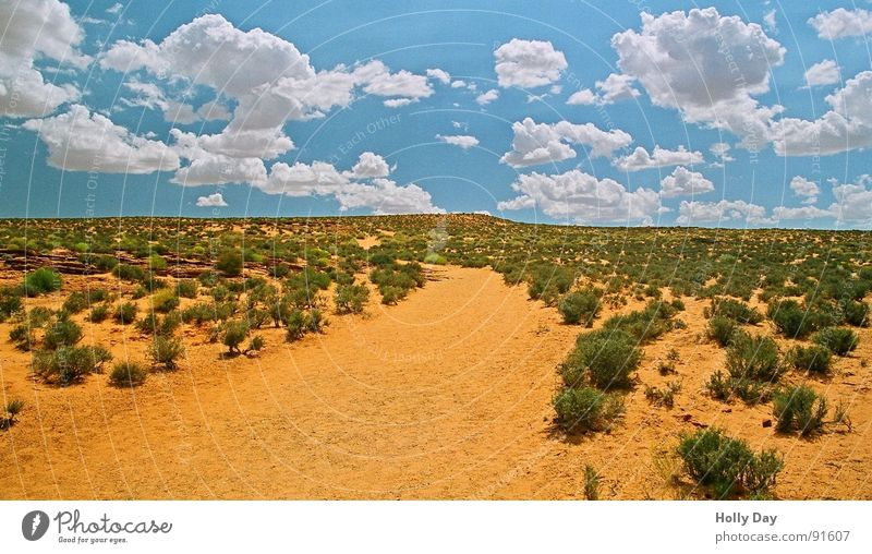 Sky Blue Summer Clouds Lanes & trails Sand Orange USA Bushes Desert Arizona South West Horseshoe Bend