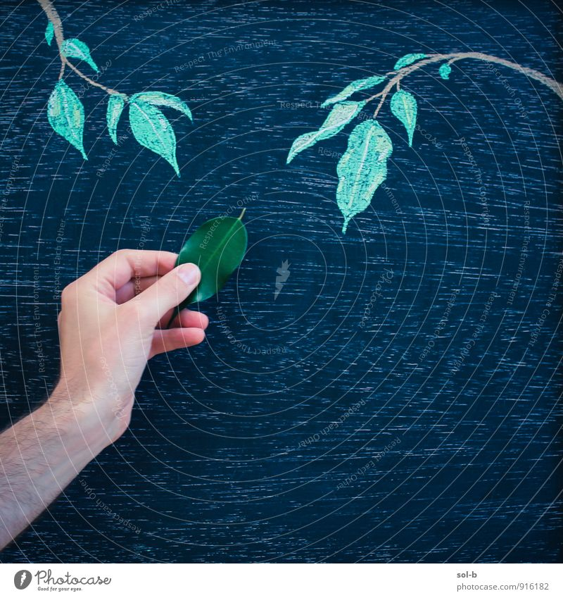hmgnthr Masculine Young man Youth (Young adults) Arm Hand 1 Human being Art Artist Work of art Culture Blackboard Chalk drawing Creativity Nature Tree Leaf