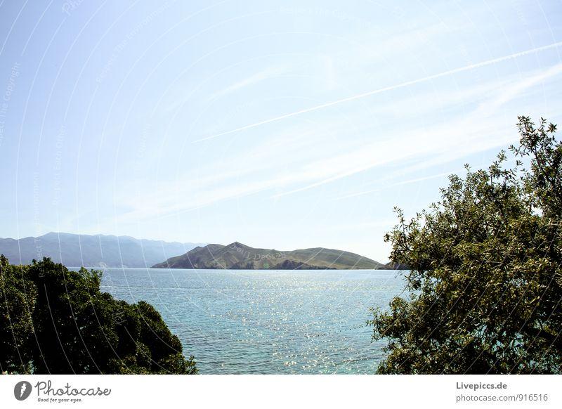 Island Krk2 Vacation & Travel Summer Summer vacation Sun Ocean Landscape Water Sky Bushes Coast Mediterranean sea Blue Yellow Green Turquoise White Colour photo
