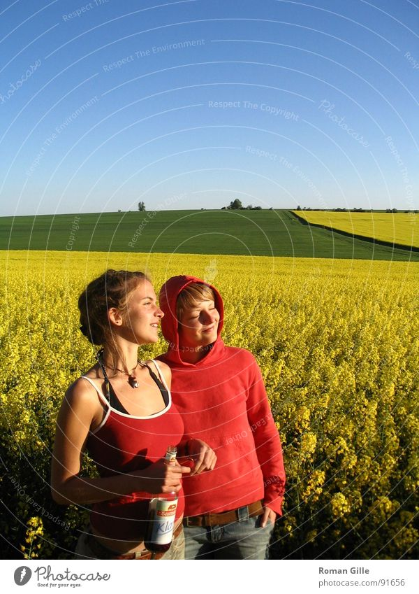watching the sun Field Yellow Canola Contentment Exterior shot Sunset Spring Joy Sky Clarity Blue Plant Calm maize jump Freedom Nature Observe To enjoy