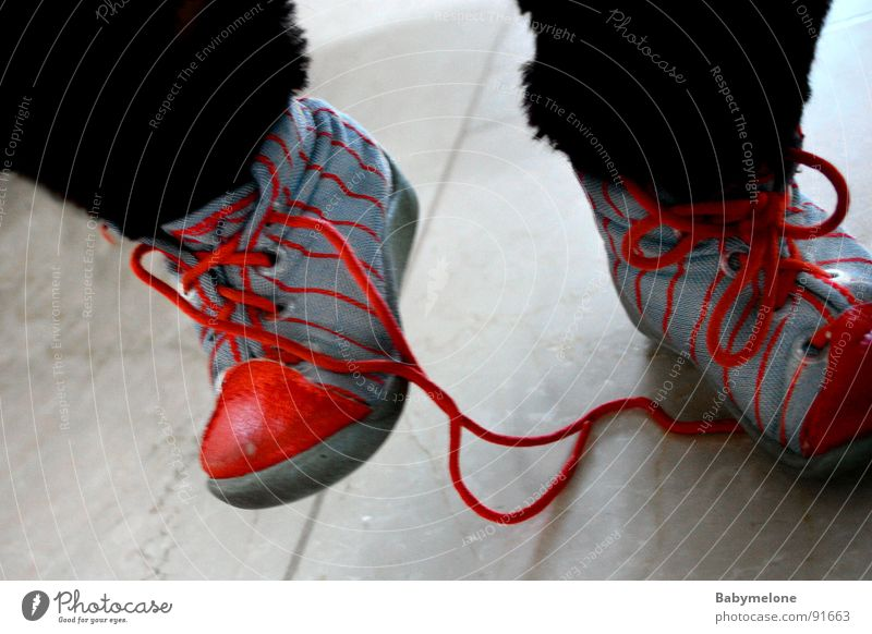 Blue Red Footwear Going Walking Dangerous Threat To fall Respect Shoelace Stumble Stumbling block