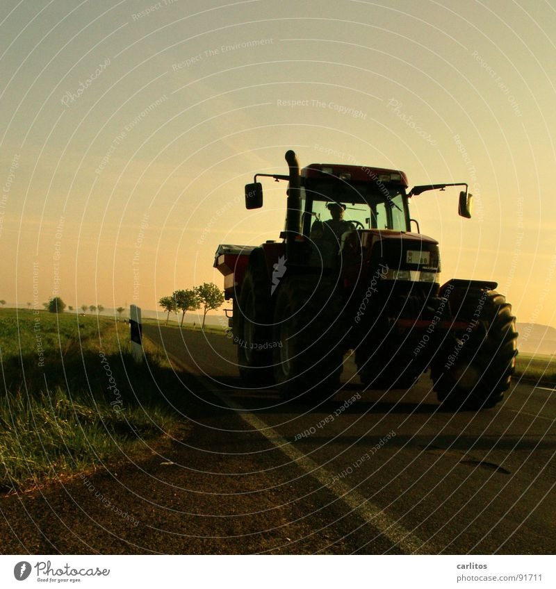 In March the farmer ... Avenue Country road Federal highway Morning Morning fog Sunrise Back-light Dazzle Tree Silhouette Hill Gradation Tractor Farmer