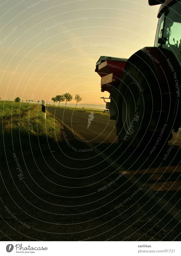 Farmer power! Avenue Country road Federal highway Morning Morning fog Sunrise Back-light Dazzle Tree Silhouette Hill Gradation Tractor Agriculture Commute Dawn
