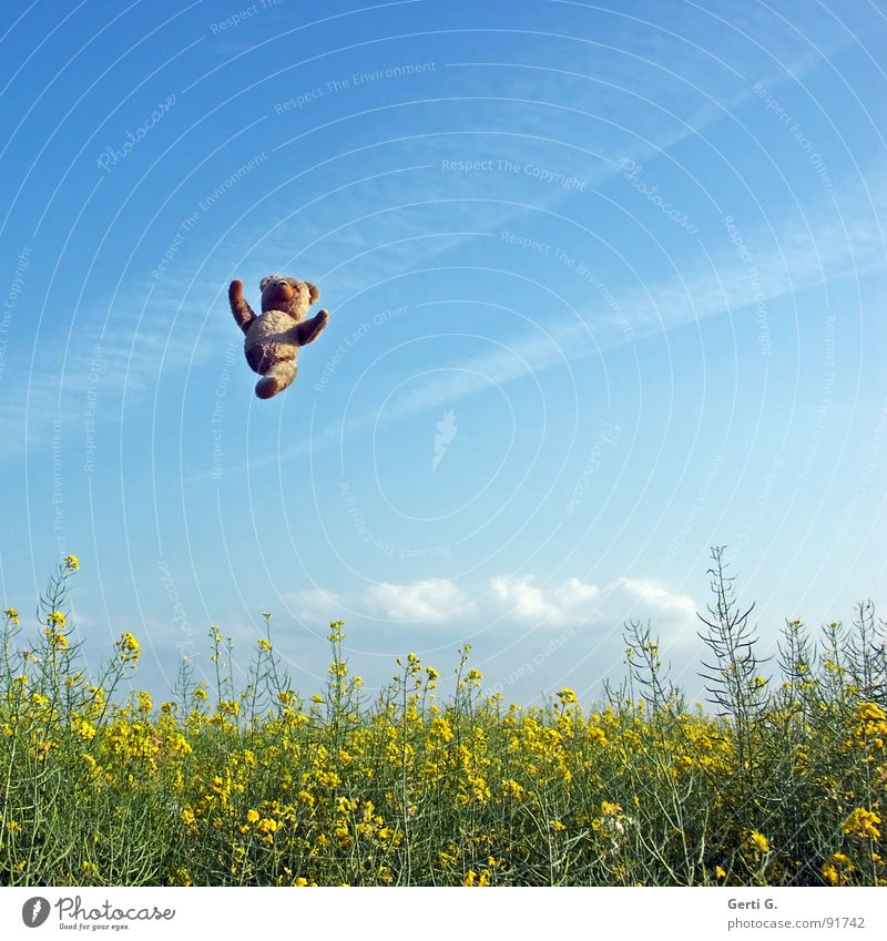 Sky Hand Blue Joy Summer Clouds Yellow Jump Happy Landscape Brown Funny Arm Flying Tall Level