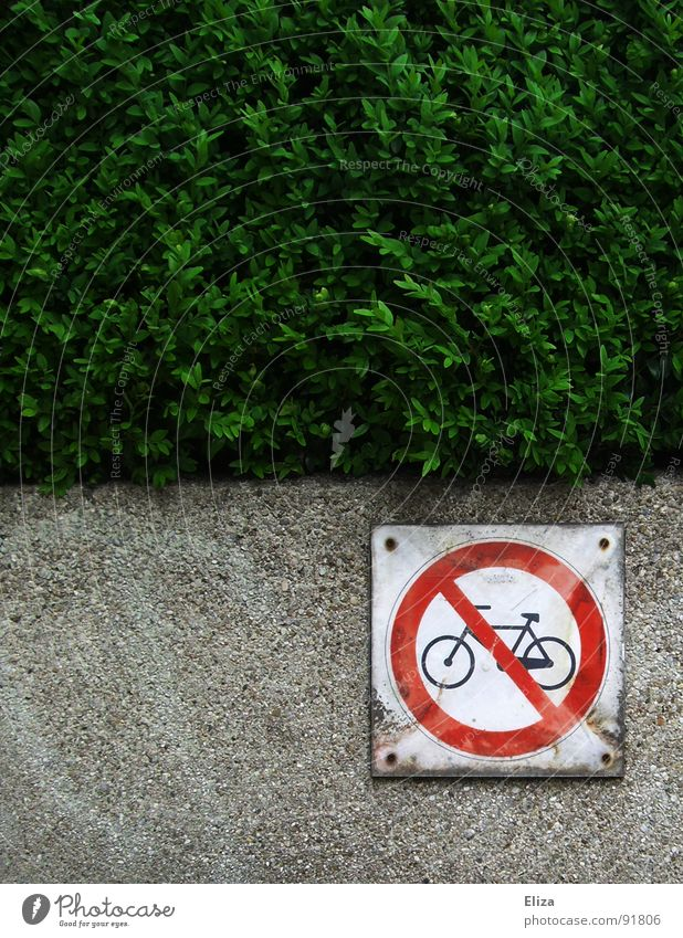 Red Movement Wall (barrier) Bicycle Signs and labeling Against Environmental protection Climate change Motionless Environmental pollution Hedge Unhealthy Lush Indifference Moral Rule