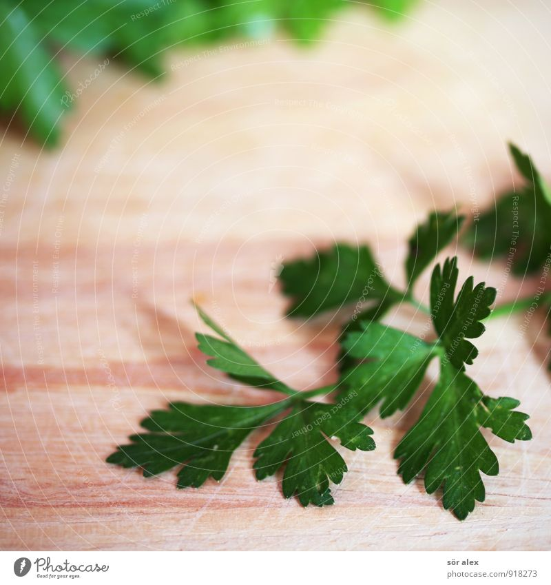 Green Food Nutrition Herbs and spices Delicious Organic produce Parsley