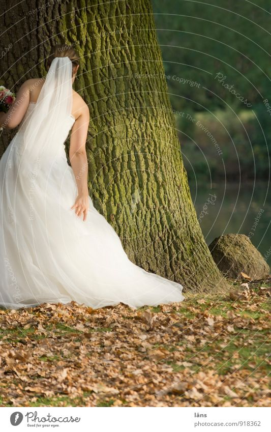 Human being Youth (Young adults) Beautiful White Tree Young woman Autumn Feminine Love Style Feasts & Celebrations Dream Park Elegant Stand Beginning