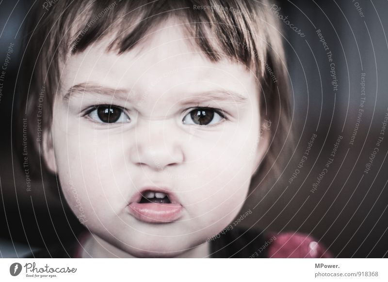 brushed on riot Human being Child Toddler Girl Infancy Head 1 0 - 12 months Baby To talk Scream Aggression Grumble Button eyes Colour photo Subdued colour