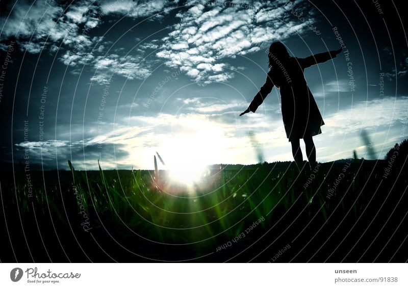come on come on Green Woman Sunset Meadow Clouds Flying Joy Blue Silhouette A lot of grass. fly you cow