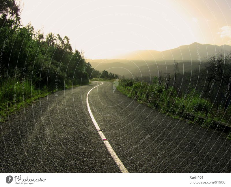 Nature Sun Green Street Mountain Lanes & trails South Africa Target Stripe Forwards Traffic infrastructure Against Dazzle Tsitsikamma national park