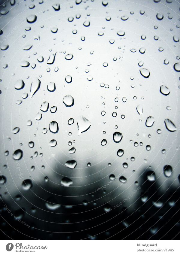 Water Environment Window Gray Sadness Rain Weather Glass Wet Climate Drops of water Gloomy Grief Clarity Storm Damp