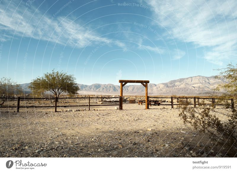 gate Environment Nature Landscape Plant Animal Earth Sand Sky Clouds Sun Summer Climate Beautiful weather Tree Desert Relaxation Wild Blue Fence Ranch