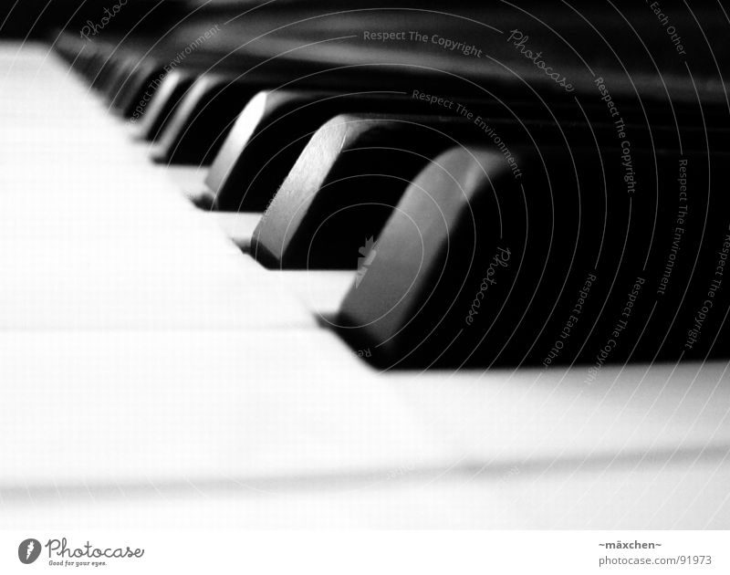 playing the piano Joy Harmonious Music Concert Piano Touch Together Romance Sound Classical Rhythm Gap Assault Musical instrument Depth of field Play piano Tone