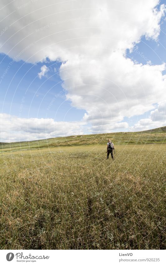 backpacker in swamp Hiking Nature Landscape Earth Air Sky Clouds Horizon Summer Drought Grass Agricultural crop Meadow Field Bog Marsh Hardangervidda Discover
