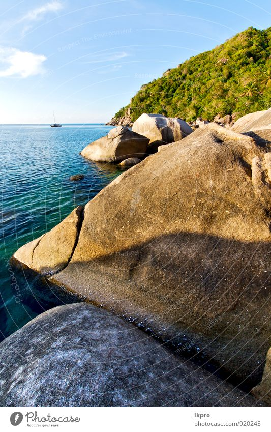 in thailand kho tao bay abstract o Vacation & Travel Tourism Trip Adventure Freedom Summer Beach Island Waves Nature Plant Sand Beautiful weather Tree Rock