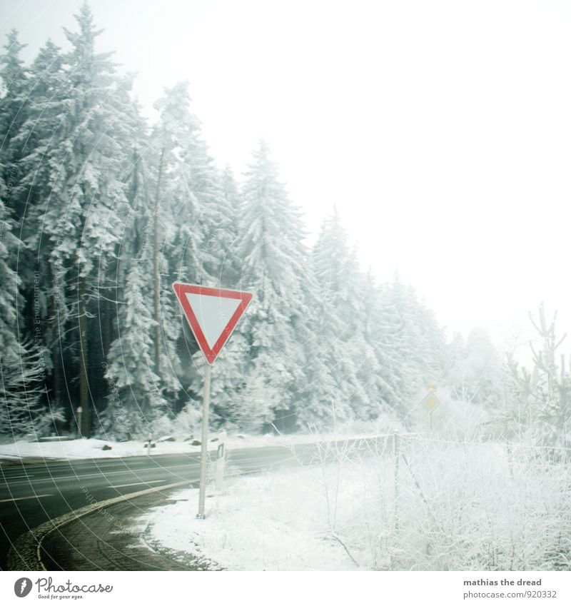 sign Environment Nature Clouds Winter Bad weather Snow Snowfall Tree Forest Transport Traffic infrastructure Road traffic Crossroads Road sign Dirty Dark Cold