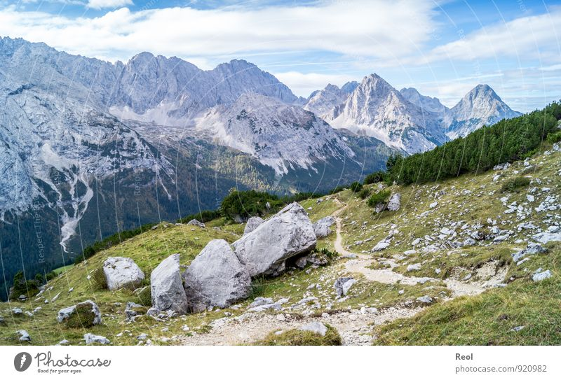 footpath Hiking Environment Nature Landscape Elements Earth Sky Clouds Summer Autumn Beautiful weather Grass Bushes Coniferous forest Alps Mountain Zugspitze