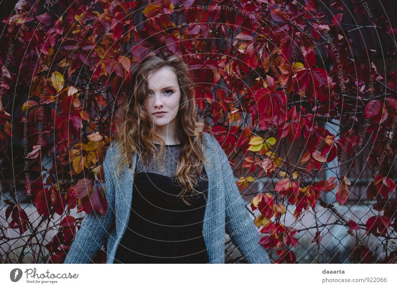 autumn Youth (Young adults) Beautiful Young woman Joy Warmth Emotions Feminine Natural Style Healthy Moody Lifestyle Leisure and hobbies Wild Elegant Modern