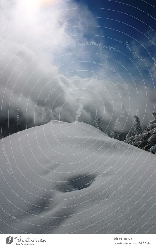 Almkogel winter atmosphere Winter Moody Ski tour Mountaineering Snow crystal Peak Winter mood Coniferous trees Contrast softnightly