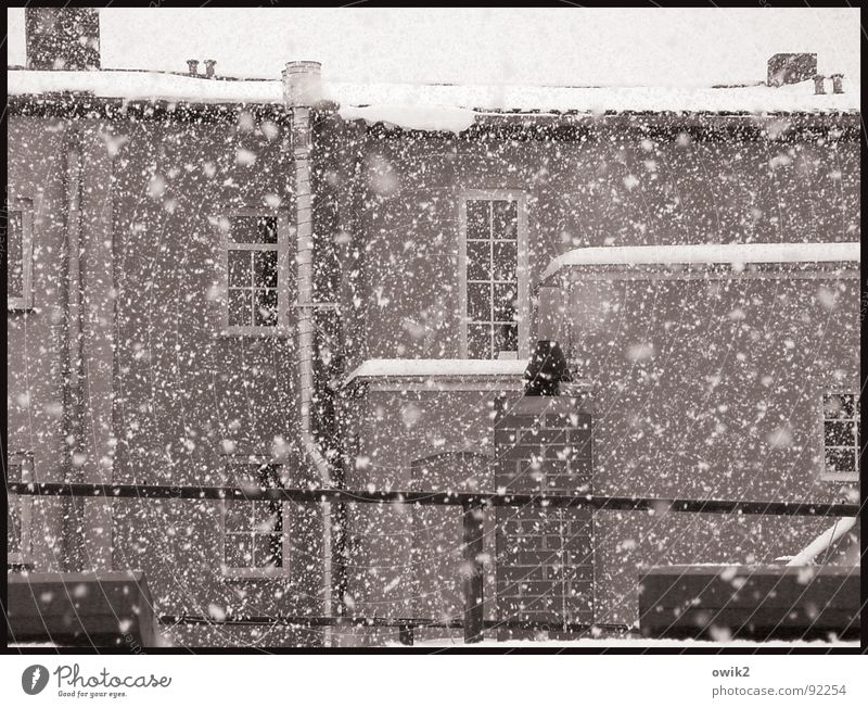 City Beautiful Calm House (Residential Structure) Winter Window Cold Wall (building) Architecture Snow Building Wall (barrier) Stone Facade Bright Snowfall