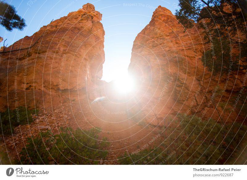 backlight Environment Nature Desert Blue Brown Yellow Gold Green Orange Black White Rock Sun Back-light Tree Stone Bryce Canyon National Park Rock formation