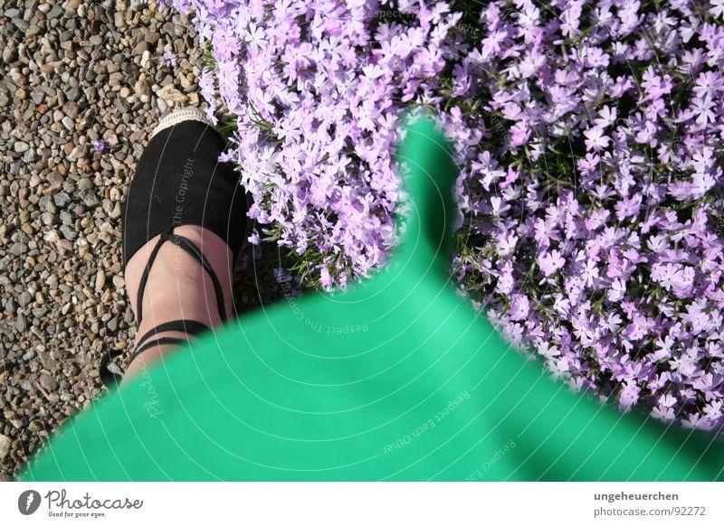 """Summer dress in the wind"" Flower Footwear Emotions Dress Green Violet Sandal Gravel Blossom Gale Woman Wind"