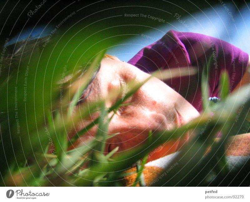 Green Blue Summer Face Calm Emotions Grass Sleep Peace Violet Hiding place