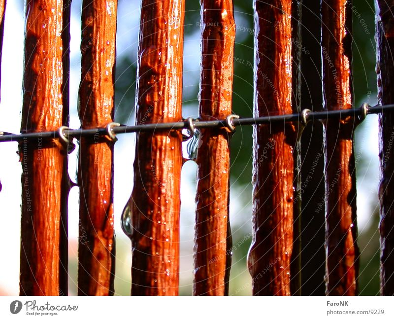 Water Wood Pasture Fence