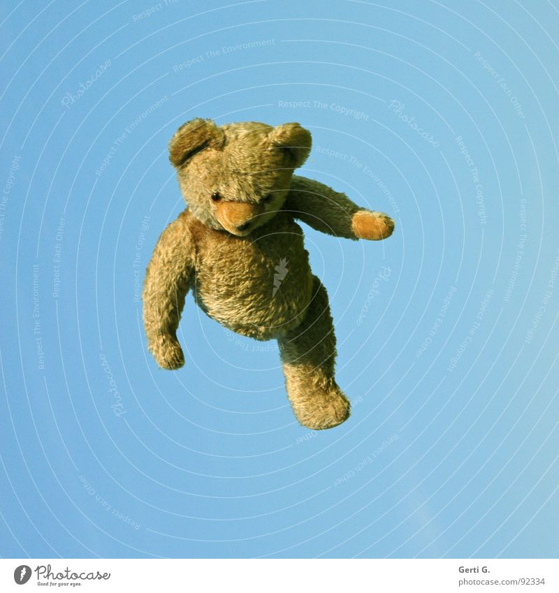 all teddy bears fly hooooch Throw in the air Jump Teddy bear Toys Brown Summer's day Phantom pain Handicapped Joy Obscure Leisure and hobbies poor leg from kick