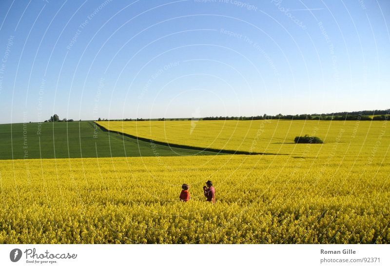 Rapsody #3 Canola Field Green Yellow Red Far-off places Human being Harmonious Vantage point Exterior shot Spring Sky Blue Nature Graffiti