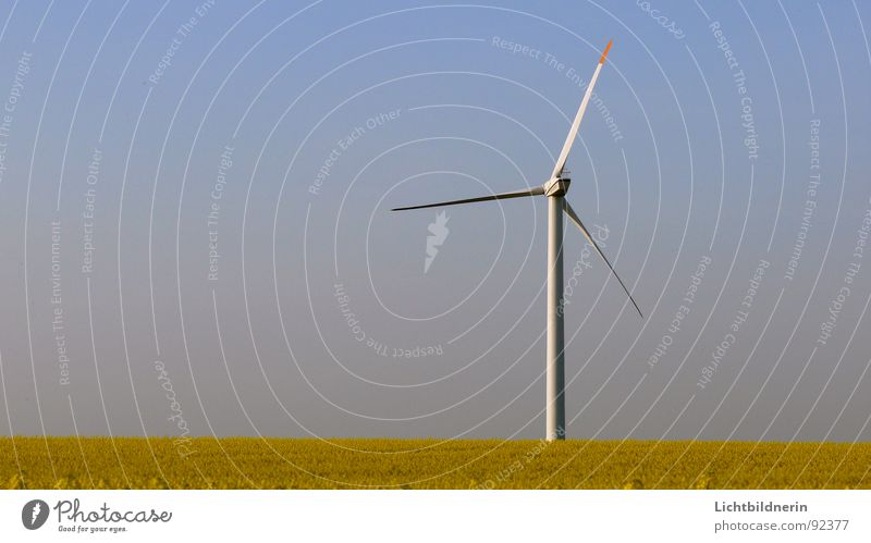 wind turbine Wind energy plant Generator Canola field Agriculture Sky blue Spring Energy industry rotary motion Rotor wind energy converter