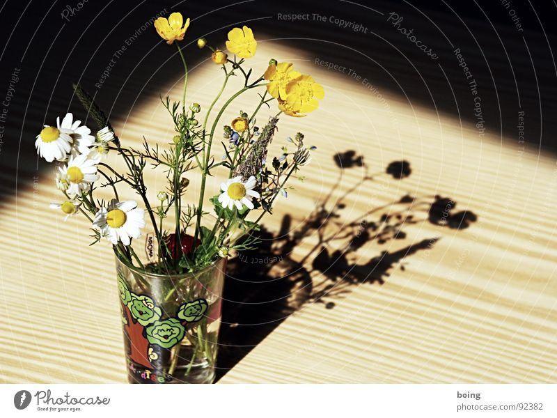 Sun Flower Joy Meadow Grass Blossom Glass Birthday Tea Blossoming Bouquet Dandelion Surprise Vase Quality
