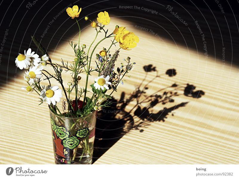 Sun Flower Joy Meadow Grass Blossom Glass Glass Birthday Tea Blossoming Bouquet Dandelion Surprise Vase Quality