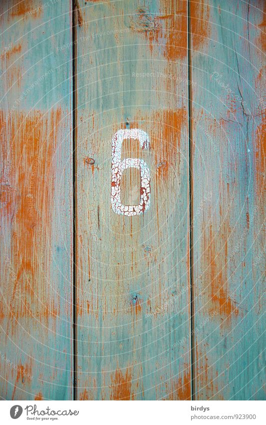 shabby 6 Wall (barrier) Wall (building) Wooden board Wooden door Digits and numbers Original Retro Orange Turquoise Senior citizen Change Weathered
