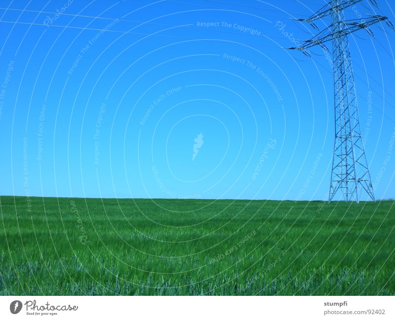 Nature and technology Spring Summer Field Hiking Wheat Air Green Grass Meadow Electricity Grain Sky Blue Electricity pylon