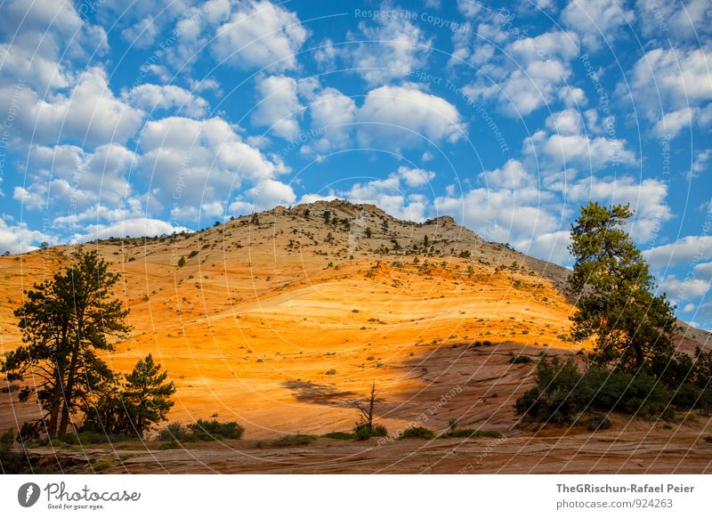 Zion-ara Environment Nature Sky Clouds Sunrise Sunset Sunlight Esthetic Exceptional Ambience Altocumulus floccus Stone Rock Tree Blue White Yellow Red Green