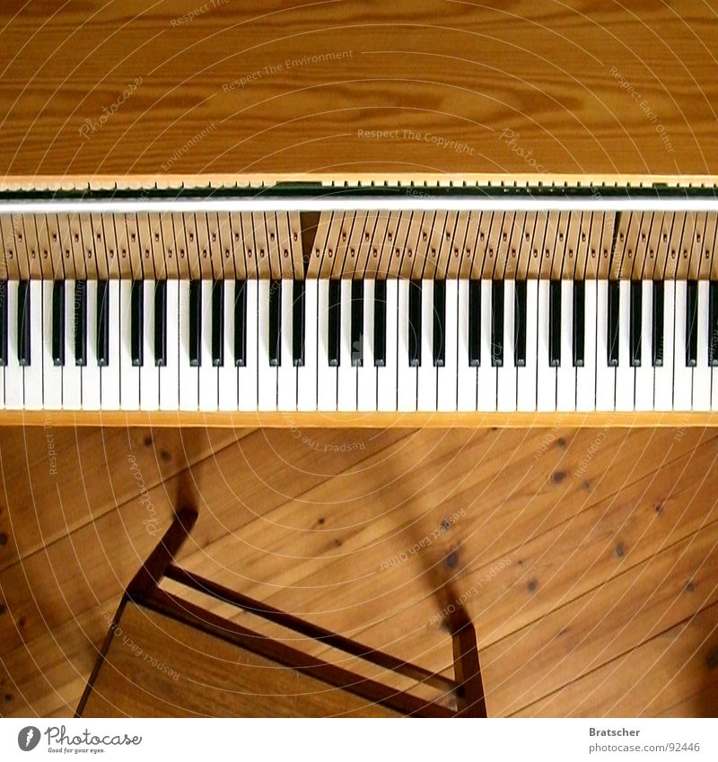 One piano, one piano! Colour photo Interior shot Studio shot Deserted Copy Space top Day Shadow Deep depth of field Bird's-eye view Happy Playing Music Art