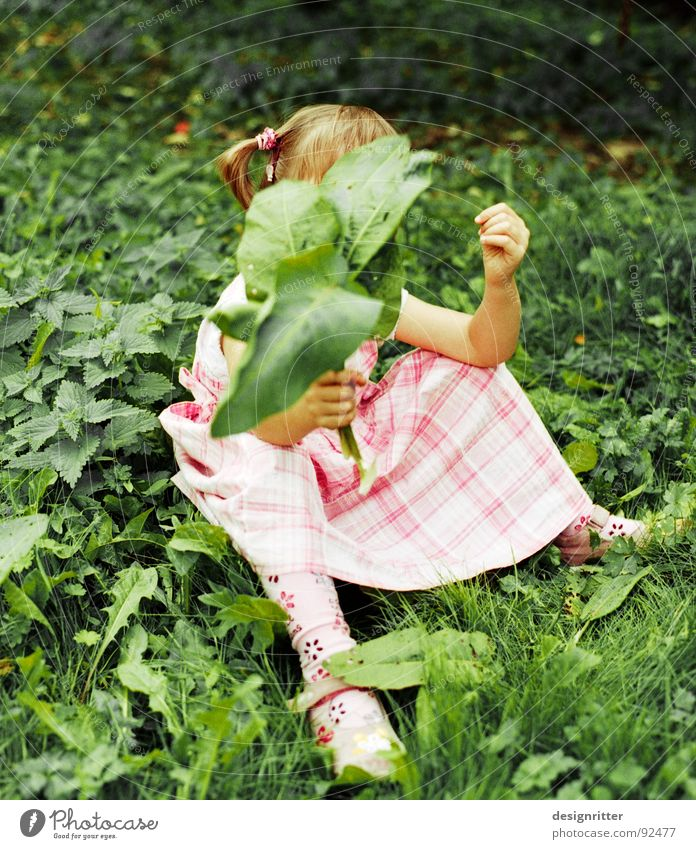contrasts Child Girl Dress Pink Checkered Grass Leaf Stinging nettle Green Playing Contrast Sit Clothing leaves play Weed Medicinal plant