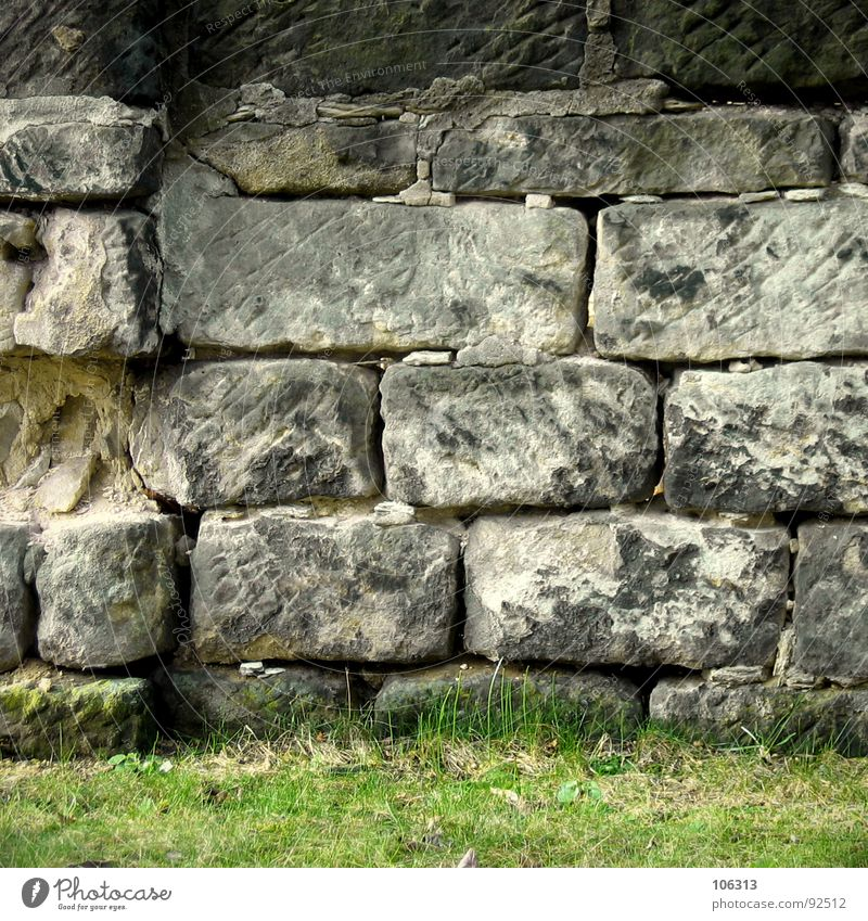 Nature Old White Green Plant Black Yellow Dark Meadow Grass Gray Stone Wall (barrier) Bright Art Architecture