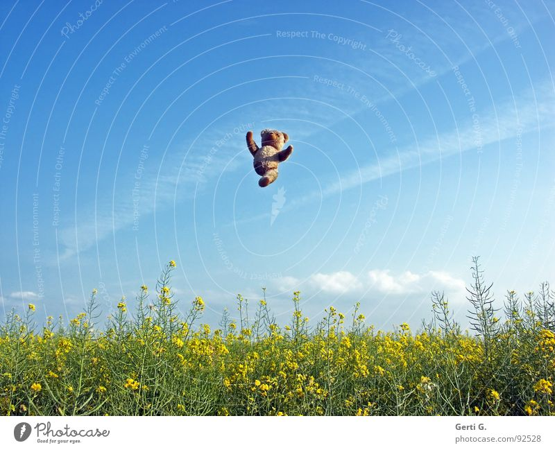 Sky Hand Blue Joy Clouds Yellow Jump Happy Landscape Brown Funny Arm Flying Tall Level Decoration