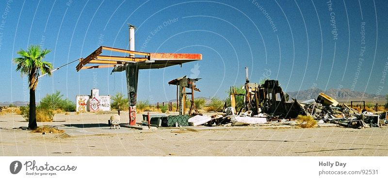 Sky Sadness Grief USA End Desert Derelict Station Palm tree Ruin Insolvency Drought Gasoline Petrol station Spirit Raw materials and fuels
