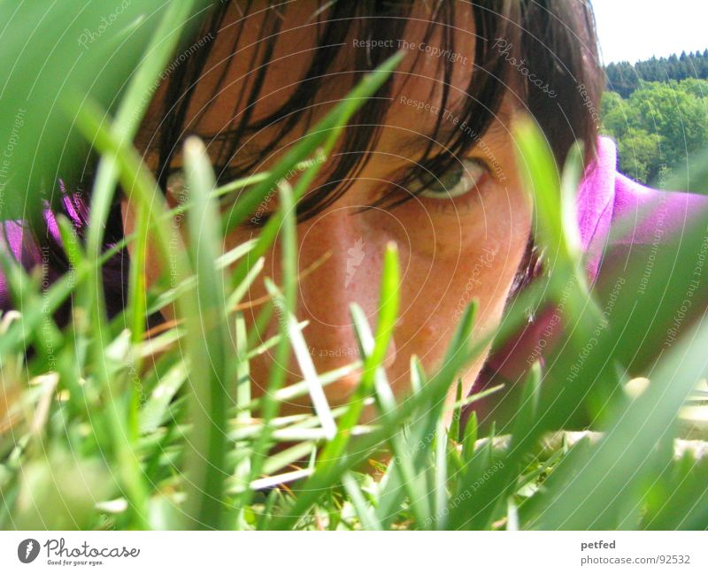 Green Face Eyes Emotions Grass Spring Violet