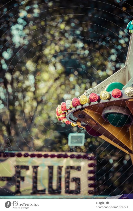 merry-go-round Fairs & Carnivals Carousel Playing Green Leisure and hobbies Joy Colour photo Exterior shot Deserted Copy Space top Day Shallow depth of field
