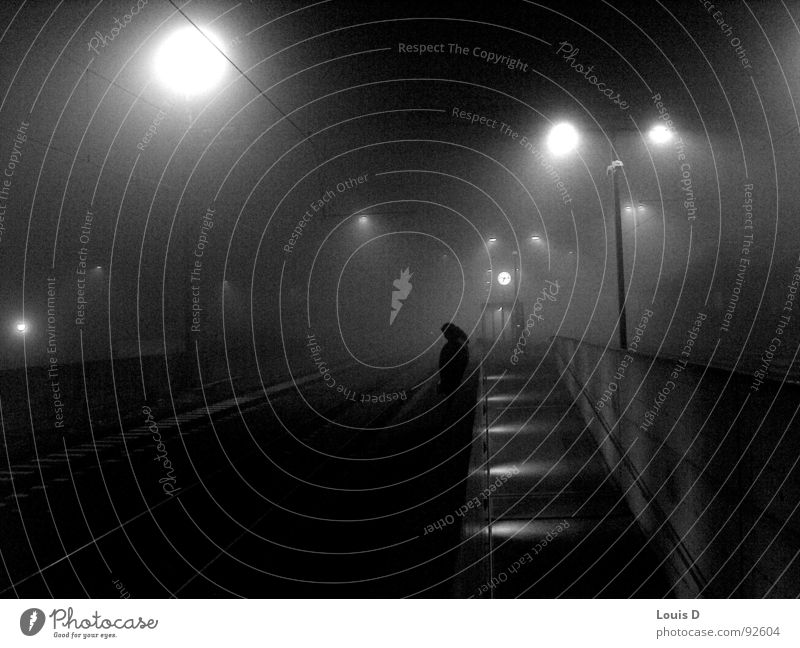 bhf Winter Cold Fog Black & white photo Morning Train station creek grey everyday life waiting for the train
