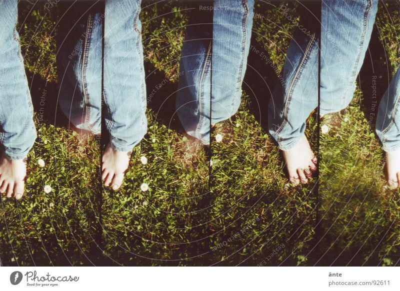 Summer Joy Emotions Grass Spring Freedom Feet Legs Jeans Multiple Pants Many Daisy Repeating Toes