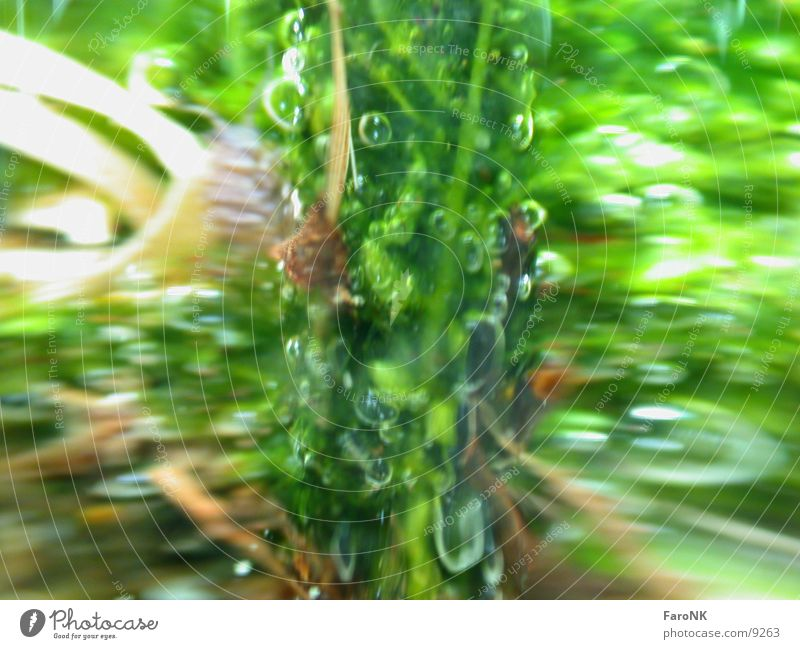 Water Green Glass Vase