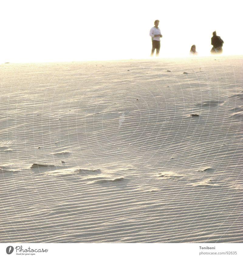 Summer Beach Warmth Sand Coast Desert Physics Beach dune Gale Doomed Andalucia Phantom