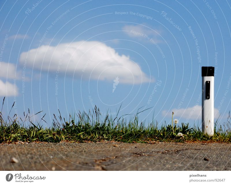 Attention! Biting curve! Sky Clouds Summer Traffic infrastructure Road traffic Street Plastic Sign Blue Brown Green White Roadside Asphalt Pole Colour photo