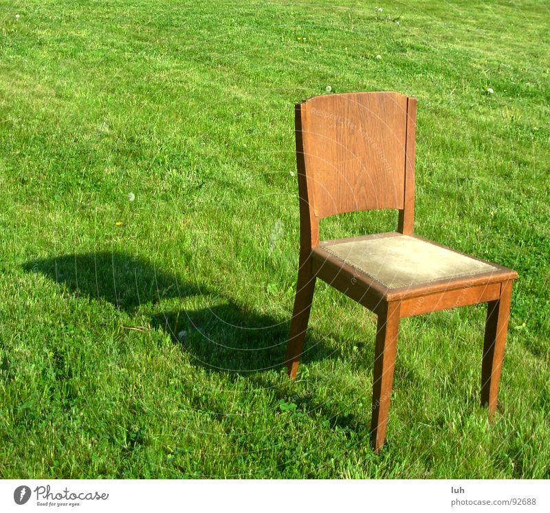 Green Summer Loneliness Meadow Jump Grass Spring Garden Wood Brown Lawn Chair Beautiful weather Seating Wood flour Sit down